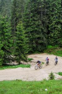 Mountain bike sull'Altopiano di Asiago (foto: Roberto Costa Ebech).