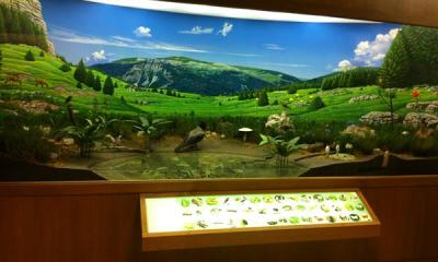 Museo naturalistico didattico