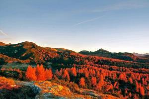 L'Ortigara visto dal Monte Forno (ph: Roberto Costa Ebech).