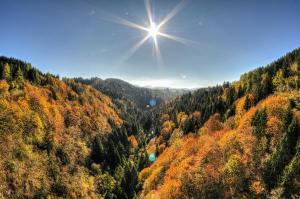 La Val d'Assa (foto: Roberto Costa Ebech)